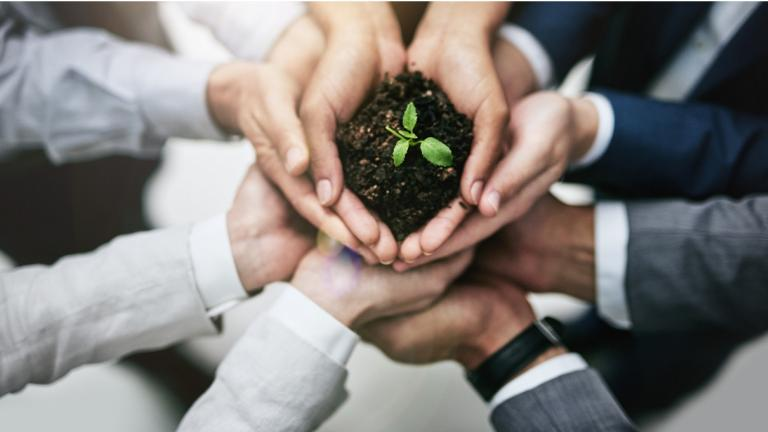 many hands holding a small plant and soil
