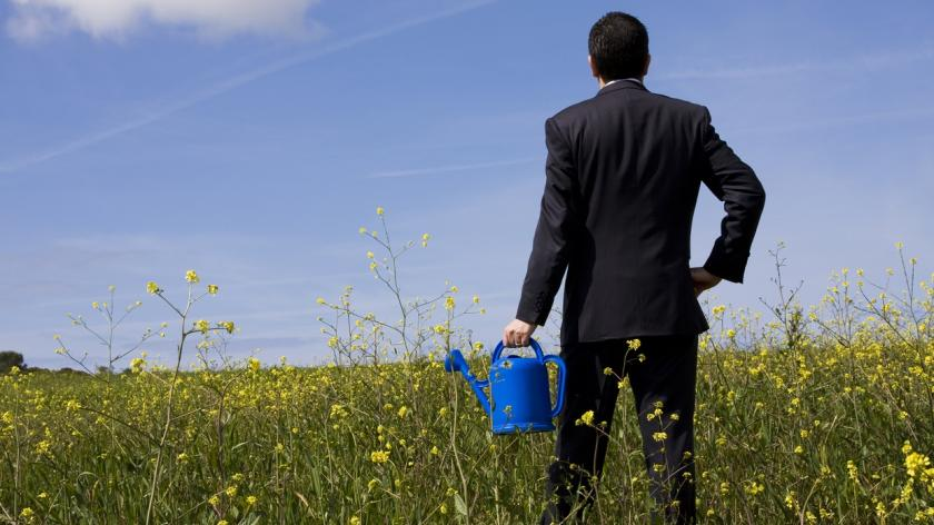 businessman in a field of weeds